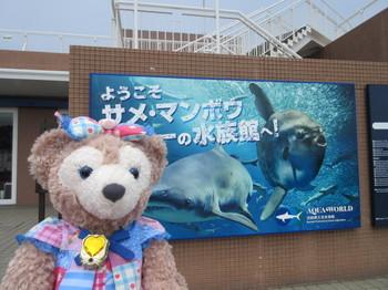 2016水族館ドライブ14