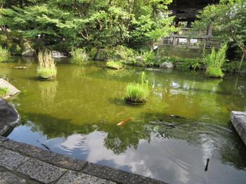 2016年夏 西新井大師1