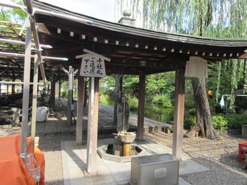 2016年夏 西新井大師4